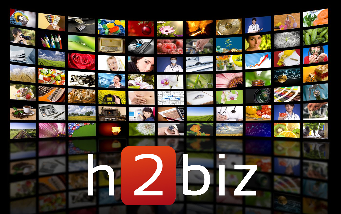 H2biz Big Data